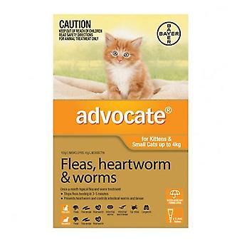 Advocate 1 Pack Small Cat under 4kg