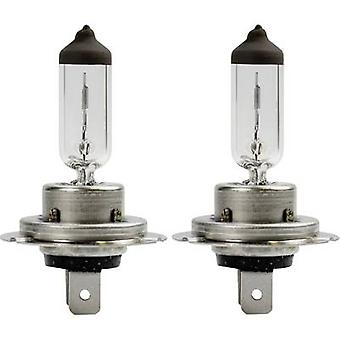 AEG halogeen lamp wit Xenon H7 55 W 12 V