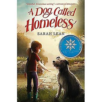 Un chien appelé les sans-abri