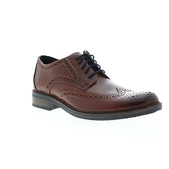 Bostonian Adult Mens Maxton Wing Wingtip & Brogue Oxfords & Lace Ups