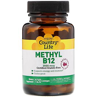 Country Life, Méthyl B12, Berry, 3 000 mcg, 120 Pastilles