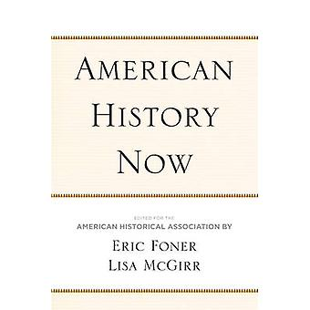 American History Now by Edited by Eric Foner & Edited by Lisa McGirr & Edited by American Historical Association