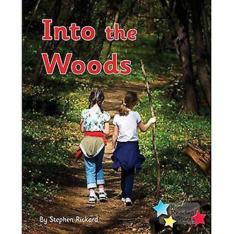 Into the Woods: Phonics Phase 3 (Reading Stars Phonics)