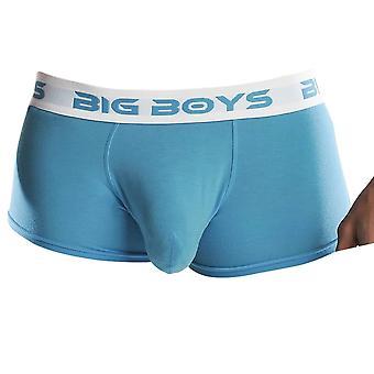 Big Boys Low Rise Briefs - Cyan Blue