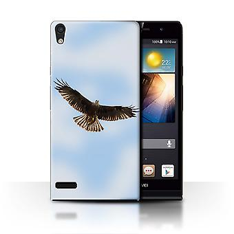 STUFF4 Case/Cover for Huawei Ascend P6/Red Kite/Birds of Prey