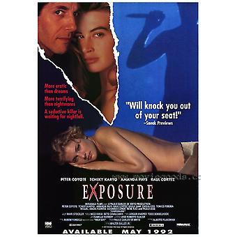 Poster do filme de exposição (11 x 17)