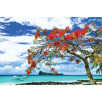 Bilde veggmaleri Mauritius øya