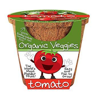 Dunecraft トマト有機野菜科学キット