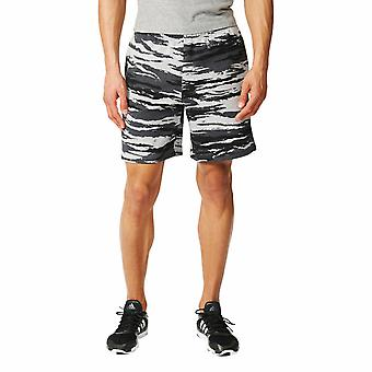Adidas Men's Training Shorts AY9102