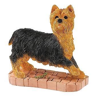 الحدود الفنون الجميلة يوركشاير الكلب الدائمة