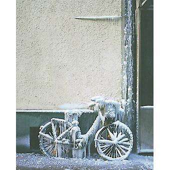 Olafur Eliasson - Inner City Out by Daniel Birnbaum - Lorraine Daston
