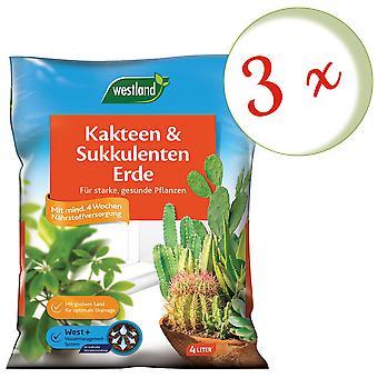 Sparset: 3 x WESTLAND® kaktukset ja mehevä maa, 4 litraa