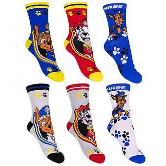 3-Pack Paw Patrol Socken