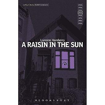 Een Raisin in the Sun (Methuen Modern Plays)