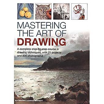 Beheersen de kunst van tekening