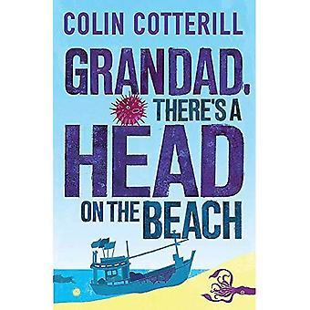 Farfar, finns ett huvud på stranden: en Jimm Moa roman