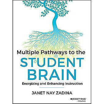 Mehrere Wege zum Gehirn Student: anregend und Verbesserung der Anweisung