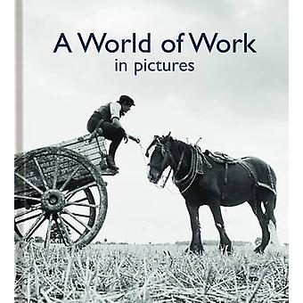 A World of Work in Pictures by Helen Bate - 9780956381835 Book