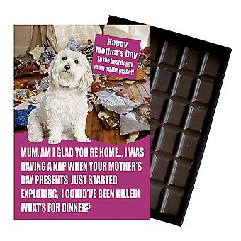 Bichon-frise Owner Dog Lover Mother?s Day Gift Chocolate Present For Mum