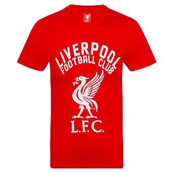 Liverpool FC Official Football Gift Mens Graphic T-Shirt