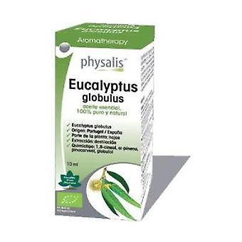 Eucalyptus Globulus Essence Bio 30 ml