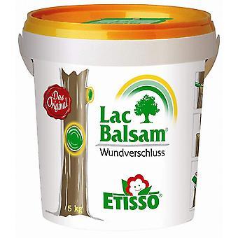 FRUNOL DELICIA® Etisso® LacBalm Wound Closure, 5 kg