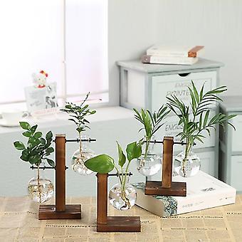 Terrarium Vasevase Dekoration Hjem Bonsai Flower Plant Vaser