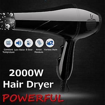 Profession Hairdressing Ionic Blow Us 2000w Electric Salon Hair Dryer