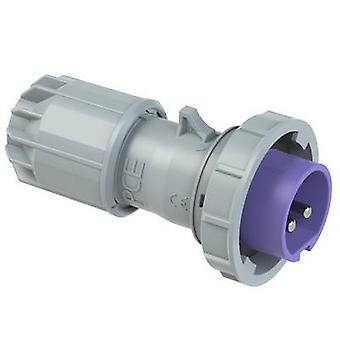 PCE Twist 0622v CEE-kontakt 16 A 2-stifts 24 V 1 st