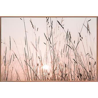 JUNIQE Print -  Sunrise Grass - Botanik Poster in Rosa