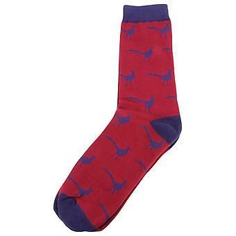 David Van Hagen Fasan-Socken - rot/blau