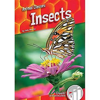 Insecten (dierlijke klassen: Dash! Geëgaliseerd lezers, niveau 1)