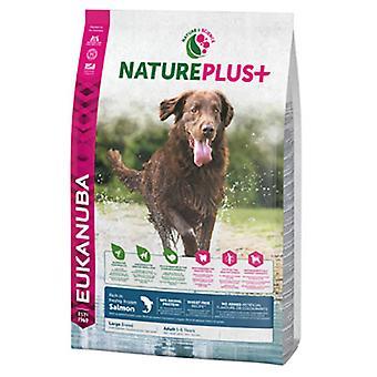 Eukanuba Pienso para Perros Adultos Grandes NaturePlus+ Salmón