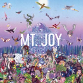 Mt.Joy - Rearrange Us [Vinyl] USA import