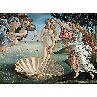 Eurographics Birth of Venus, Botticelli Jigsaw Puzzle (1000 Pieces)