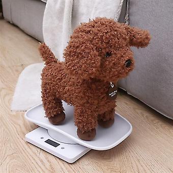 معرف الحيوانات الأليفة العلامات مقياس الحيوانات الأليفة الصغيرة لكلب القط المحمولة مصغرة مصغرة قياس مقياس الطفل الحيوانات الأليفة