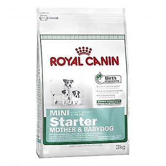 Royal Canin Mini Starter, dog dry food mix - 3 kg
