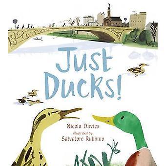 Just Ducks! by Nicola Davies - Salvatore Rubbino - 9781406327397 Book