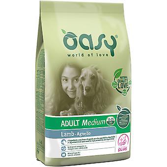 Oasy Adult Medium Lamb (Dogs , Dog Food , Dry Food)