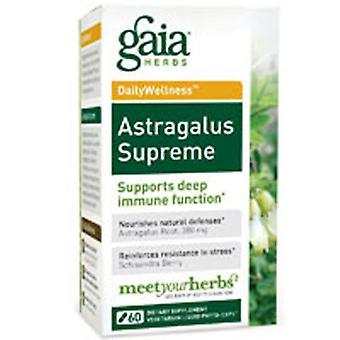 Gaia Herbs Astragalus Supreme, 60 Caps
