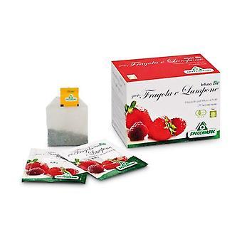 Orgaaninen mansikka ja vadelma-infuusio 20 infuusiopussia