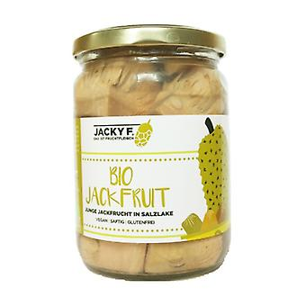 Bio Jackfruit 500 g