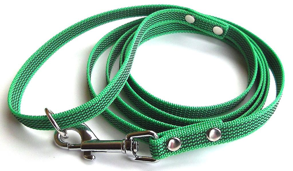 Super-Grip leash, green 15 mm wide