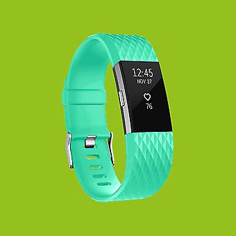 For Fitbit batch 2 plastic / silicone bracelet for men / size L turquoise watch