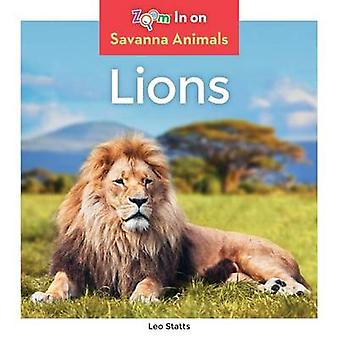 Lions by Leo Statts - 9781680792027 Book