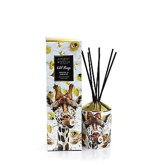 Ashleigh e Burwood Wild Things Luxury Scented Reed Difusor Boxed Gift Set You're Having a Giraffe - Orange Blossom