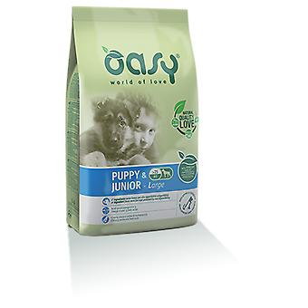 Oasy Puppy Large Chicken (Dogs , Dog Food , Dry Food)