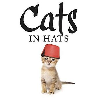 Cats in Hats by Scratching & Kat