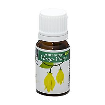 Ylang ylang ECO essential oil 10 ml of essential oil