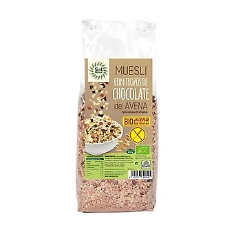 Oatmeal muesli with pieces of chocolate 425 g